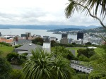 Wellington View from the Botanic Gardens